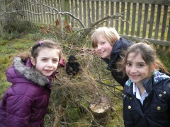 BT Forest School